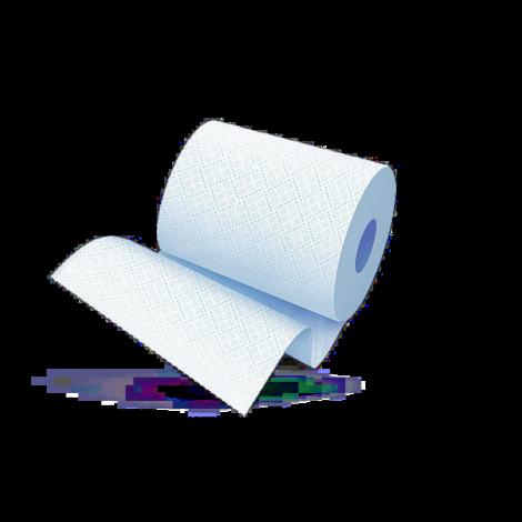 Протирочная бумага 2х-слойная Бирюзовая 24Х35см., уп.2 рулона.